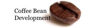 Coffee Bean Development